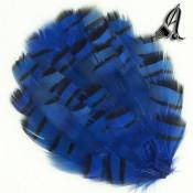 Tocado de Plumas de Faisan Azul
