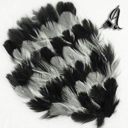 Tocados de Plumas Franjas Negro y Blanco