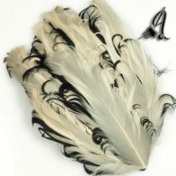 Tocados de Plumas Beige Rizado y Negro