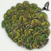 Tocados de Plumas Pavo Real Verdes