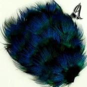 Tocados de Plumas Pavo Real Azul Intenso