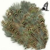 Tocado de Plumas de Faisan Marron y Verde