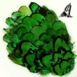 Tocado de Plumas de Faisán Verde